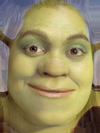 Drew Barrymore's Face Combined with Shrek -